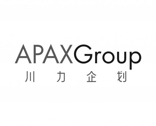 APAX GROUP Blk